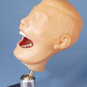 Dental Chair Manikin