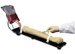 Venous Training Arm